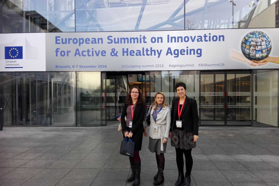 European Summit on Innovation for Active and Healthy Ageing, Grupo SSI