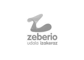 Ayuntamiento Zeberio