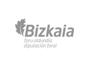 Bizkaia Foral