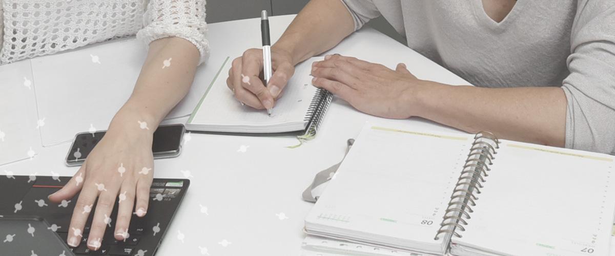 Emprendimiento y Empleo, Grupo SSI