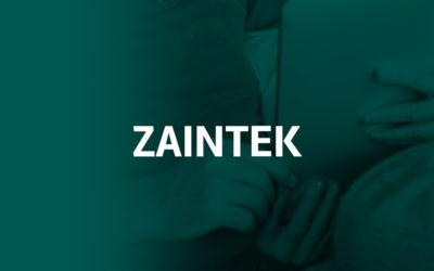 Proyecto Zaintek