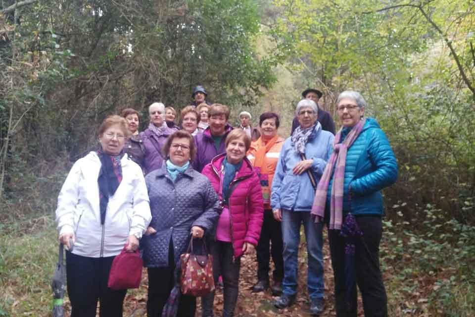 Actividades en Nagusi Aretoa de Amorebieta, Grupo SSI