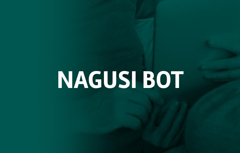 proyecto-nagusi-bot