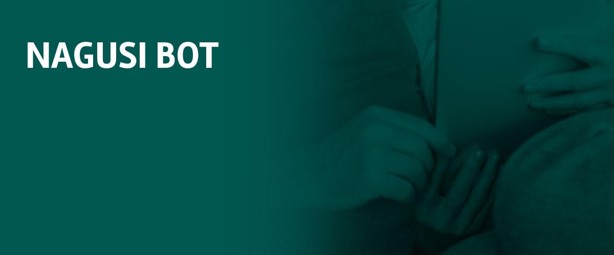 Proyecto nagusi bot - Grupo SSI